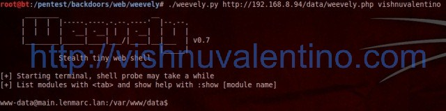 PHP Stealth Web Shell and Backdoor : Weevely