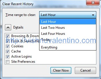 How to Delete Browser Cookies Cache and History