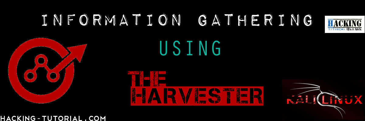 Information Gathering using theHarvester in Kali Linux