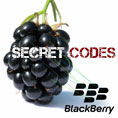 Blackberry Secret Codes | Ethical Hacking Tutorials, Tips